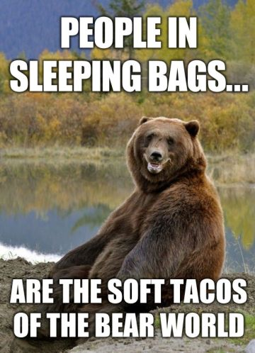people-in-sleeping-bags-soft-tacos-of-the-bear-world